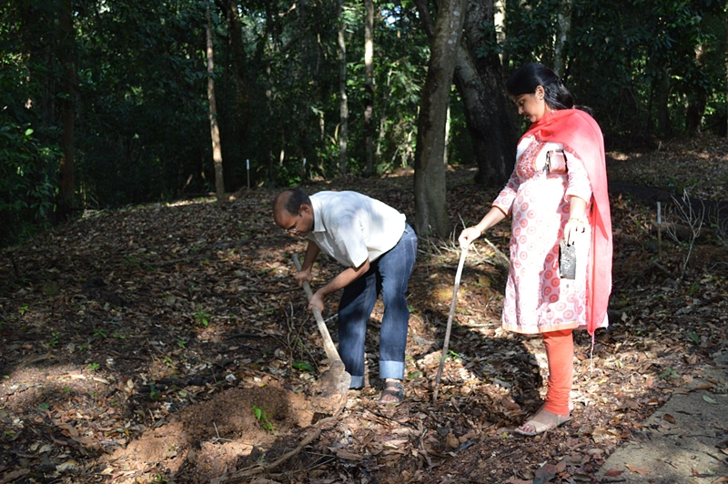 PSU International Students join Plant Trees Activity
